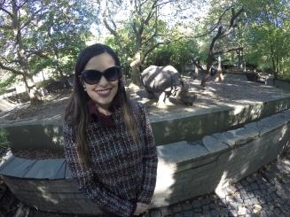 Área do rinoceronte