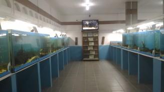 Parte da área de visitação