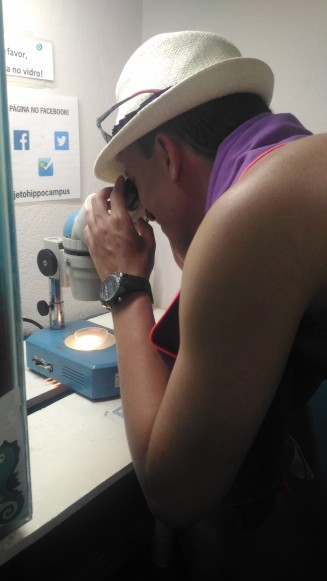 Observando o microscópio